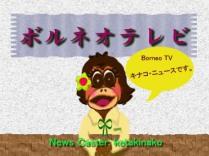 borneo-tv